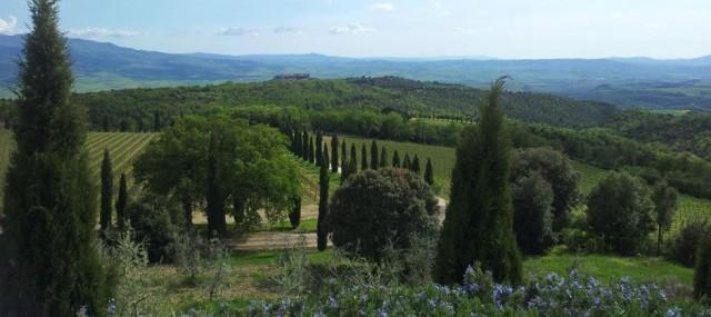Vy Toscana